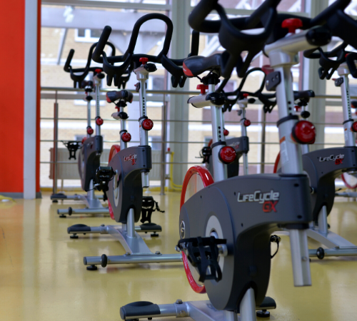 Exercise bikes in rows in gym