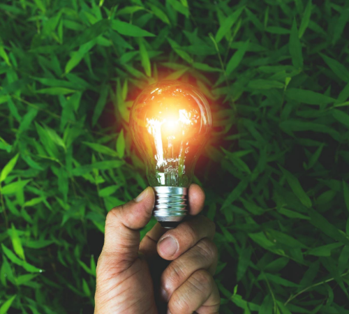 green energy for business light bulb